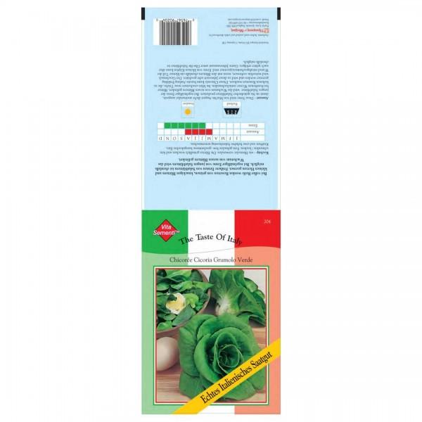 Samen Chicoree Cicoria Grumolo Verde
