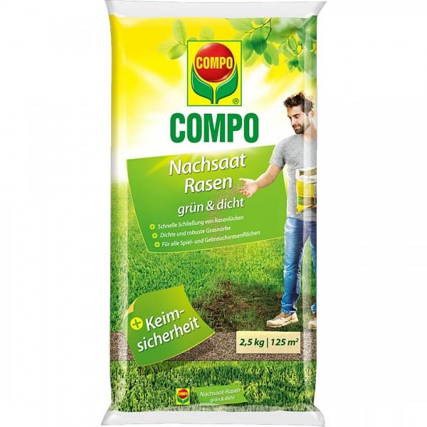 C. Nachsaat grün und dicht 2,5kg